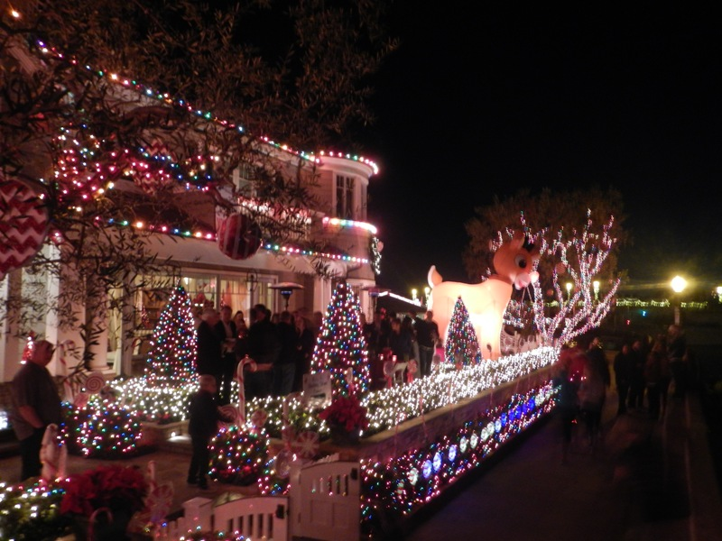 ChristmasRun_HouseWithLights1